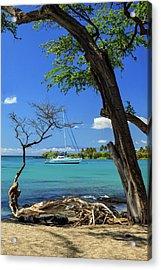 A Sailboat In Anaehoomalu Bay Acrylic Print by James Eddy