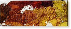 A Sandbox For Artists Acrylic Print by Terrance DePietro