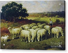 A Shepherd With His Sheep Out In The Field, 1898 Acrylic Print