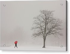 A Shortcut Through The Snow Acrylic Print by Tom York Images