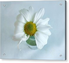 Acrylic Print featuring the photograph A Small Pleasure by Louise Kumpf