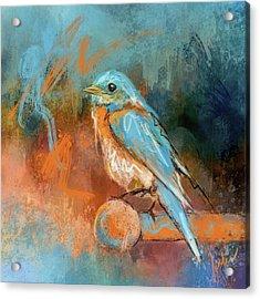 A Splash Of Bluebird Acrylic Print