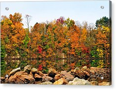 A Splash Of Color Acrylic Print