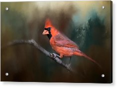 A Splash Of Red Acrylic Print by Jai Johnson