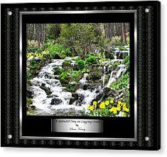 A Splendid Day On Logging Creek Acrylic Print