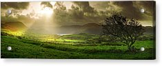 Acrylic Print featuring the photograph A Spot Of Sunshine by John Chivers