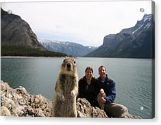 A Squirrel Takes The Shot By Tripping Acrylic Print by Melissa Brandts/National Geographic My Shot