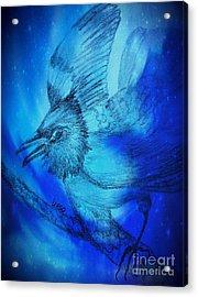 A Stellar Night Acrylic Print