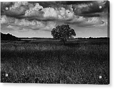 A Storm Is Coming To Wyoming Grasslands Acrylic Print
