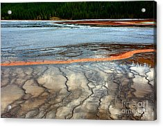 Acrylic Print featuring the photograph A Stream Of Gold by Robert Pearson