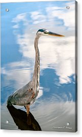 A Stroll Among The Clouds Acrylic Print by Christopher Holmes