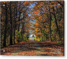 A Stroll Through Autumn Colors Acrylic Print