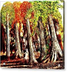 A Stroll Through The Woods Acrylic Print by Mark Conrad
