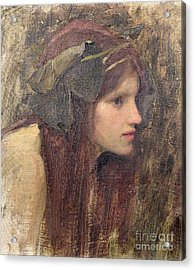 A Study For A Naiad Acrylic Print by John William Waterhouse