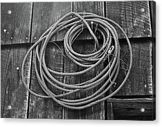 A Study Of Wire In Gray Acrylic Print by Douglas Barnett