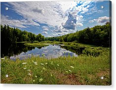 Acrylic Print featuring the photograph A Summer Morning At The Bridge by David Patterson