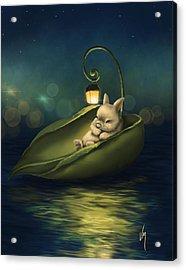 A Summer Night's Dream Acrylic Print by Veronica Minozzi