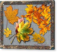 A Taste Of Fall Acrylic Print by Doreen Whitelock