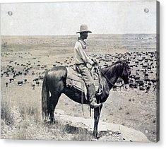 A Texas Cowboy On Horseback On A Knoll Acrylic Print by Everett