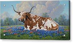 A Texas Welcome Acrylic Print