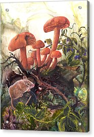 Acrylic Print featuring the painting A Thorny Situation by Sherry Shipley
