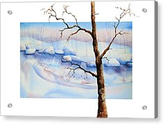 A Tree In Another Dimension Acrylic Print by Debbie Lewis