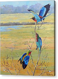 A Trio Of Rollers Acrylic Print by Karen Macek