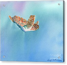A Turtles Flight Acrylic Print by Tracy L Teeter
