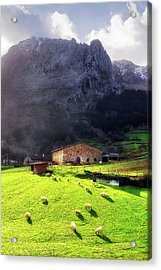 A Typical Basque Country Farmhouse With Sheep Acrylic Print