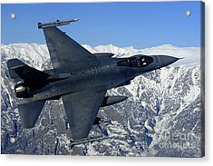 A U.s. Air Force F-16 Fighting Falcon Acrylic Print by Stocktrek Images