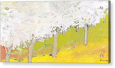 A Valley In Bloom Acrylic Print by Jennifer Lommers