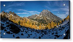 A Valley Of Larches 2 Acrylic Print