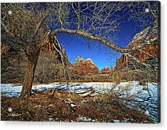 A View In Zion Acrylic Print by Christopher Holmes