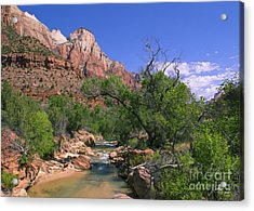 Acrylic Print featuring the photograph A Virgin In Zion by Suzette Kallen