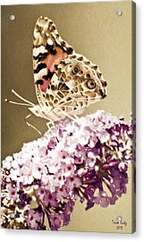 A Visit From Pat Acrylic Print