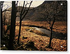 A Walk In Donegal Acrylic Print