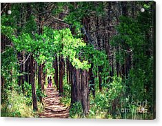 A Walk Into The Forest Acrylic Print by Tamyra Ayles