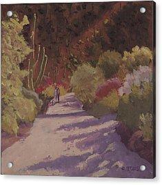 A Walk  On A  Sonoran Desert Road Acrylic Print