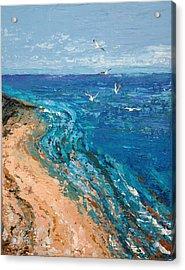 A Walk On Dauphin Island Acrylic Print