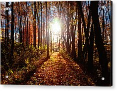 Acrylic Print featuring the photograph A Walk To Grandma's by April Reppucci