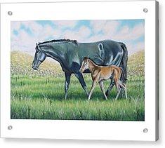 A Walk With Mom Acrylic Print