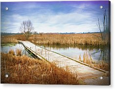 A Warm Day In February Acrylic Print