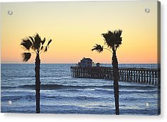 Acrylic Print featuring the photograph A Warmer Place To Be by AJ Schibig
