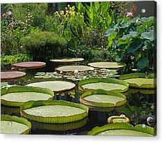Acrylic Print featuring the photograph A Water Garden by Byron Varvarigos