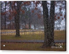 A Watery View Acrylic Print