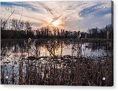A Wetlands Sunset Acrylic Print by Kristopher Schoenleber
