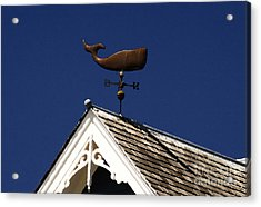 A Whale Of A House Acrylic Print by David Lee Thompson