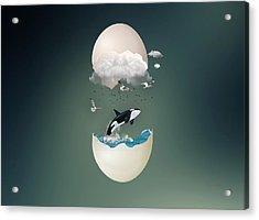 A Whale Of A Tale Acrylic Print