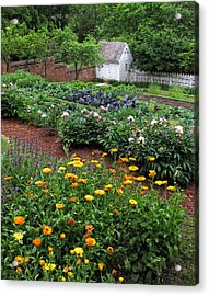 A Williamsburg Garden Acrylic Print