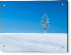 A Winter's Landmark Acrylic Print by Todd Klassy